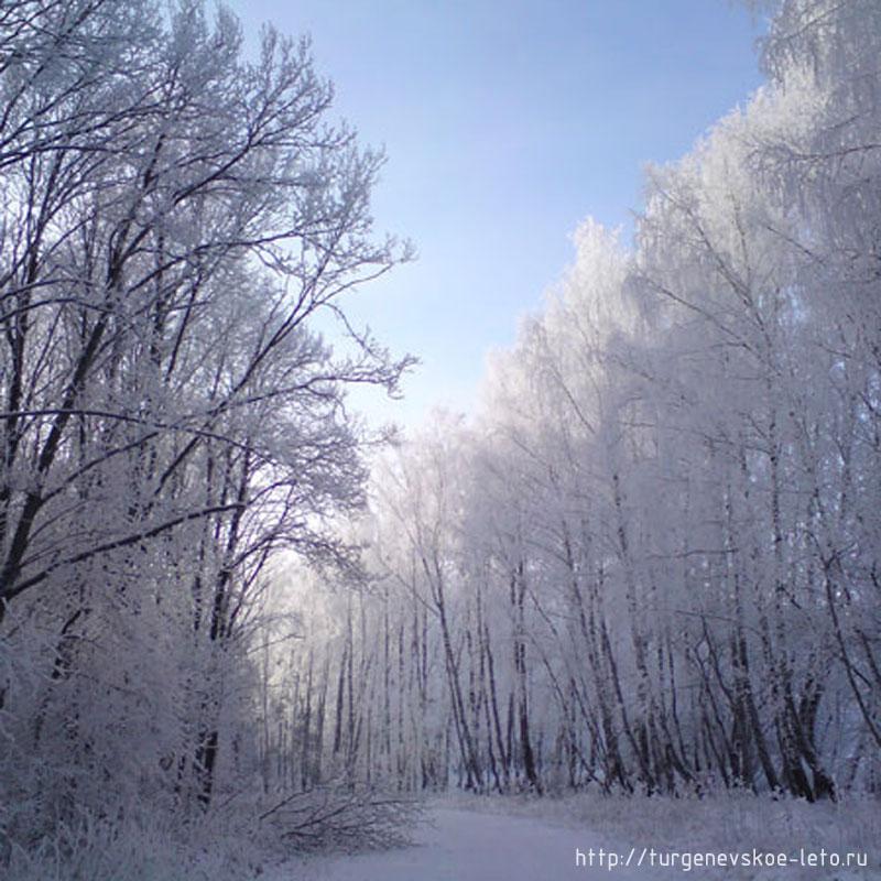 дорога в деревню Бежин Луг