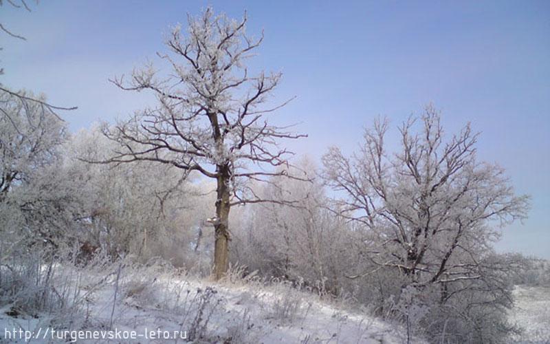 Холм. Наверху деревенский хутор, внизу течёт река Снежедь