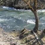 Отдых в России | Впечатления туриста-водника о путешествии по реке Снежедь