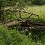 отдых в деревне, экотуризм, деревня Стекольная Слобода, мосток, фототур по Тургеневским местам