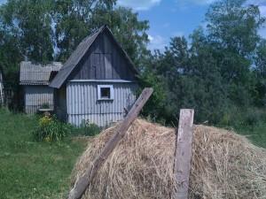 отдых в деревне | бежин луг, моя деревенская баня