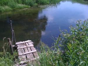 отдых в деревне, Бежин Луг, река Снежедь, летние купания